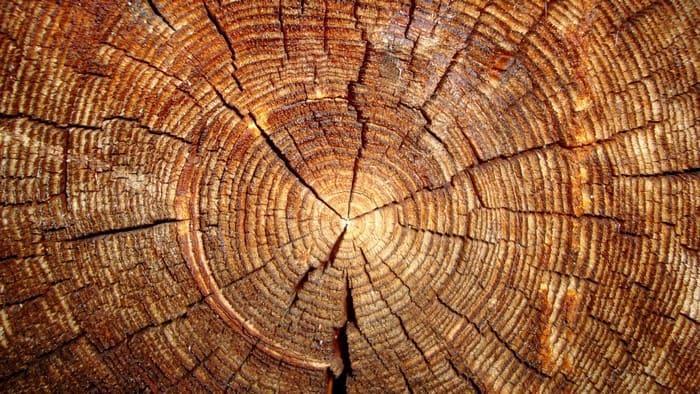 Имитация спила древесины