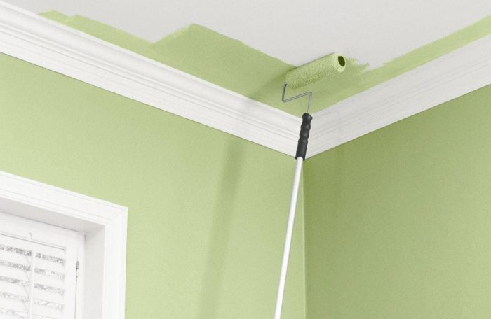 Окраска - последний этап ремонта потолка