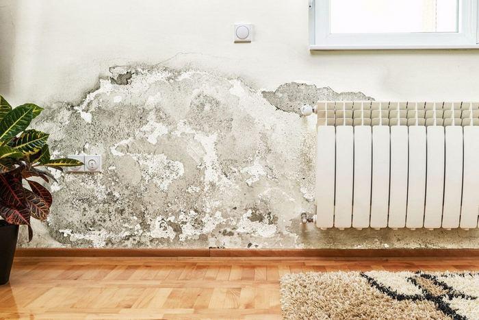 Цементно-песчаный раствор не позволяет образоваться грибку и плесени на стенах