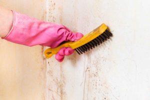 Грязь и пыль удаляют специальной щеткой