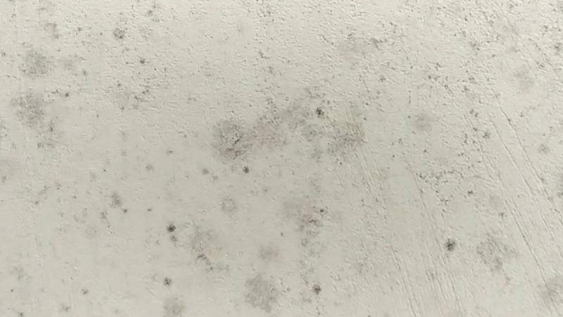 Гипсовая штукатурка разрушается от воды, поэтому на стенах возможно появление грибка и плесени