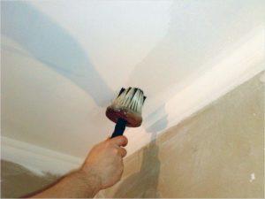 Мелкую пыль необходимо обязательно удалить с поверхности мягкой кистью