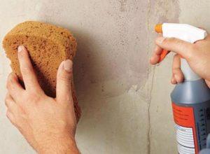 Обрабатывают стены обеззараживающими веществами и обезжиривателем