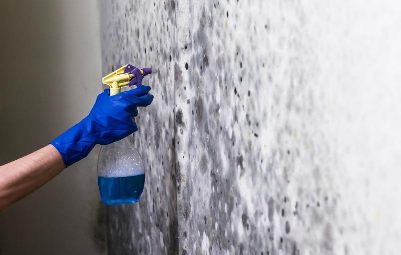 Плесень и ржавчину с поверхности удаляют специальными препаратами